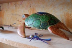 Turtle and Firefly